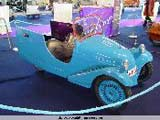 Flanders Collection Car - foto 39 van 52