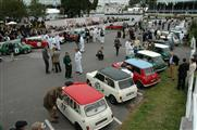 GoodWood Revival Meeting - foto 7 van 30