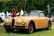 Concours Paleis Het Loo (NL) - photography by PPress - foto 12 van 40