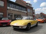Ypres Lotus Day 2013 - foto 6 van 24