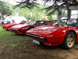 Italian Classic Car Meeting - Chaudfontaine - foto 39 van 48