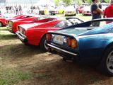 Italian Classic Car Meeting - Chaudfontaine - foto 40 van 48