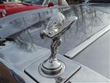 Cars and Coffee in close-up - foto 51 van 65