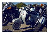 Distinguished gentleman's ride by Elke - foto 15 van 26