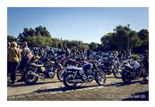 Distinguished gentleman's ride by Elke - foto 21 van 26