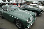 74th Goodwood Members' Meeting - foto 42 van 179