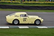 75th Goodwood Members' Meeting - foto 41 van 249