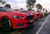 Mustang Desire, old meets new - foto 1 van 70