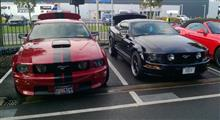Mustang Desire, old meets new - foto 2 van 70