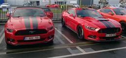 Mustang Desire, old meets new - foto 3 van 70