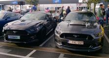 Mustang Desire, old meets new - foto 6 van 70