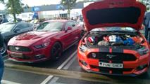 Mustang Desire, old meets new - foto 8 van 70
