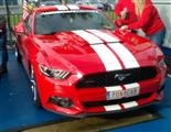 Mustang Desire, old meets new - foto 9 van 70