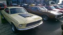 Mustang Desire, old meets new - foto 10 van 70