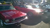 Mustang Desire, old meets new - foto 12 van 70