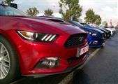 Mustang Desire, old meets new - foto 19 van 70
