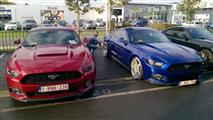 Mustang Desire, old meets new - foto 20 van 70