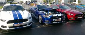Mustang Desire, old meets new - foto 22 van 70