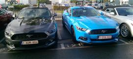 Mustang Desire, old meets new - foto 23 van 70