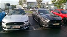 Mustang Desire, old meets new - foto 24 van 70