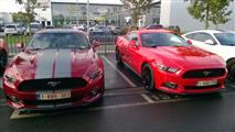 Mustang Desire, old meets new - foto 27 van 70