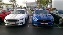 Mustang Desire, old meets new - foto 28 van 70