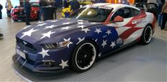 Mustang Desire, old meets new - foto 37 van 70