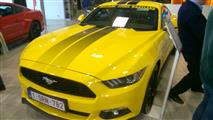 Mustang Desire, old meets new - foto 39 van 70