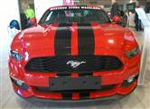 Mustang Desire, old meets new - foto 40 van 70
