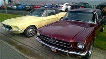 Mustang Desire, old meets new - foto 53 van 70