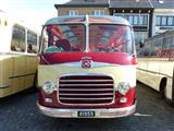 International Oldtimer Bus & Coach Rally Diepenbeek - foto 49 van 139